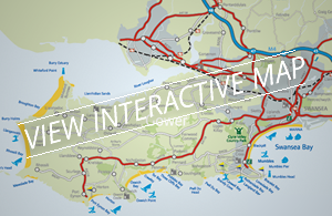 View interactive map