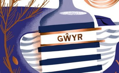 The Gower Gin Company Ltd