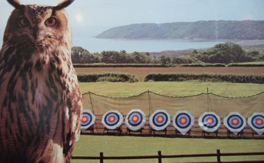 Perriswood Archery and Falconry Centre