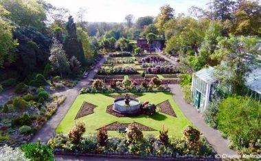 Botanical Gardens Singleton Park