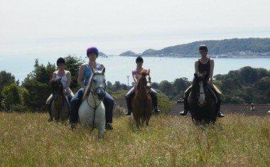 Clyne Farm Riding & Activity Centre
