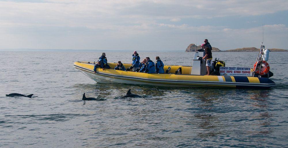 Gower Coast Adventures