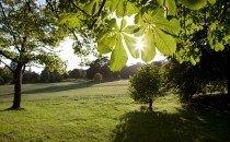 Singleton Park © City & County of Swansea 2014