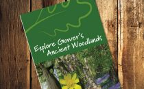 Gower's Ancient Woodlands