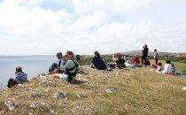 Porpoise picnic Southgate 2015-Judith Oakley