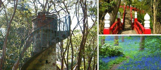 National Walking Month and Clyne in Bloom Swansea Bay