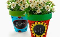 Seed bombs and plant pots