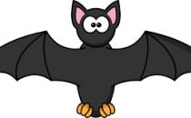 Spot the Bat